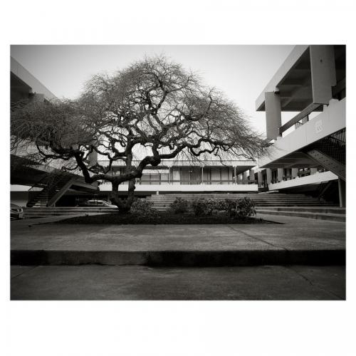 2-20-16 ETRSi 220 Kodak TXP 320-015NCS-N