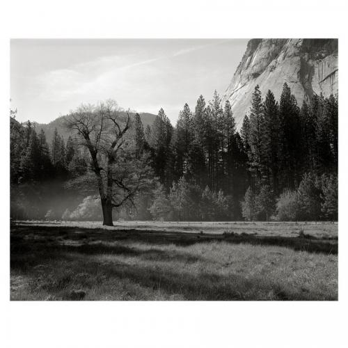 4-25-16 Speed Graphic Ilford FP4-001NCS