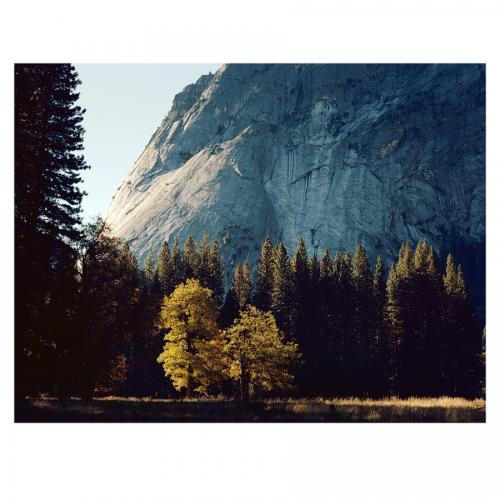 Morning Light in Yosemite Valley