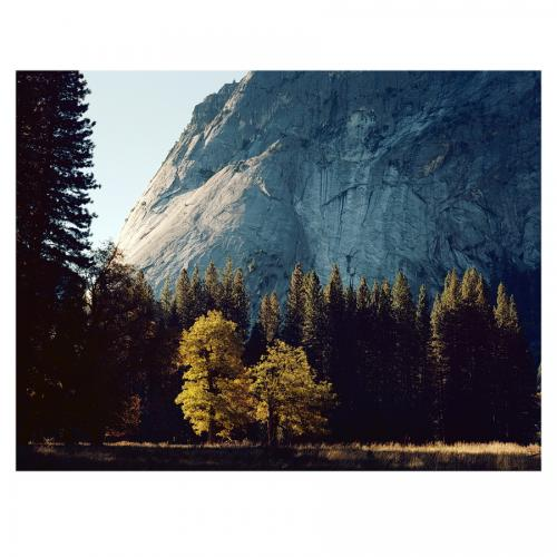 Morning Light in Yosemite Valley